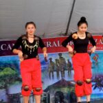 2016 Youth Cultural Development Program (YCDP)